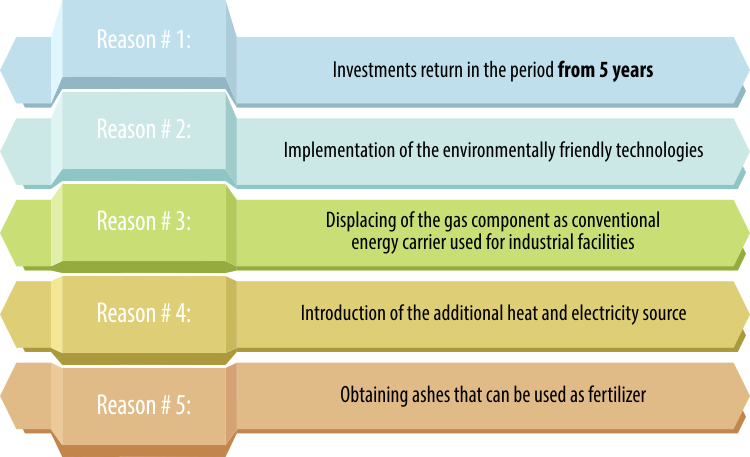 5 reasons for realization of the biomass projects